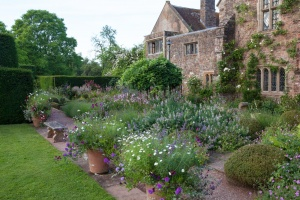 Cothay Gardens